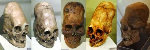 Craniile Paracas