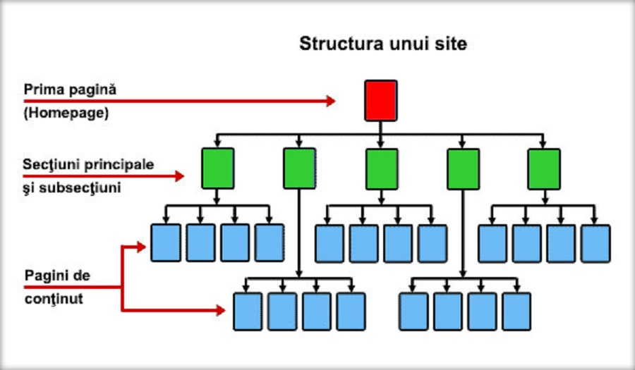 Structura Site-ului Si Importanta Ei In SEO